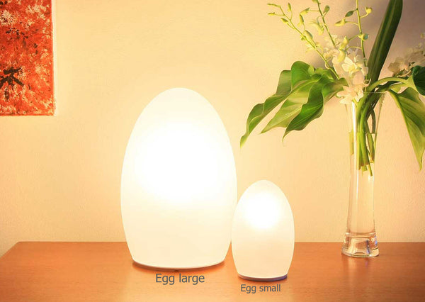 Neoz | Egg Large 350 Cordless Rechargeable Table Lamp |NEO-C027U-1L -  Lighting - Teakwood Central