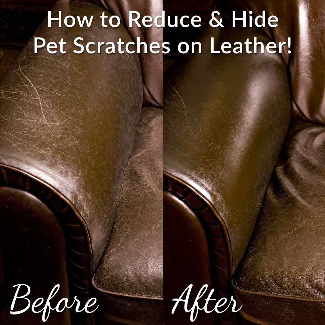 Leather Honey can reduce pet scratches on leather.