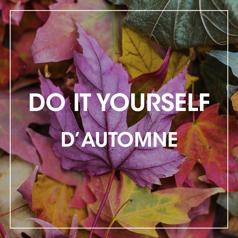 Do It Yourself d'automne