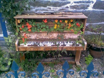foter._com_photo_piano-with-nasturtium-garden_