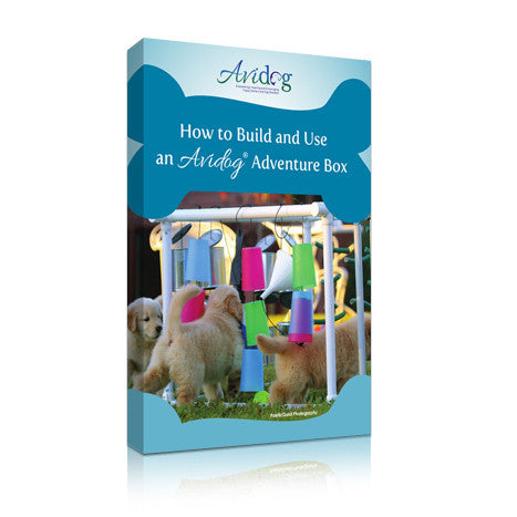How to Build and Use an Avidog Adventure Box