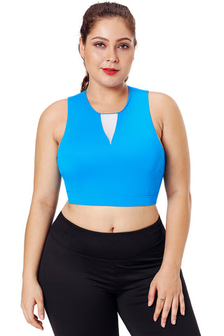 Blue Mesh Insert High Neck Sports Bra