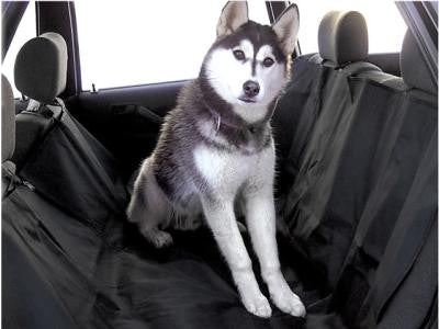 Protective seat cover for dogs