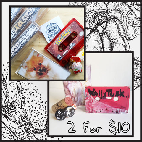 2 for $10 | Excalibur! and Ice Cream and Wine. | Niatsus | Cassette Label and Copier at Sustain - Gallery and Shop - Chicago, IL