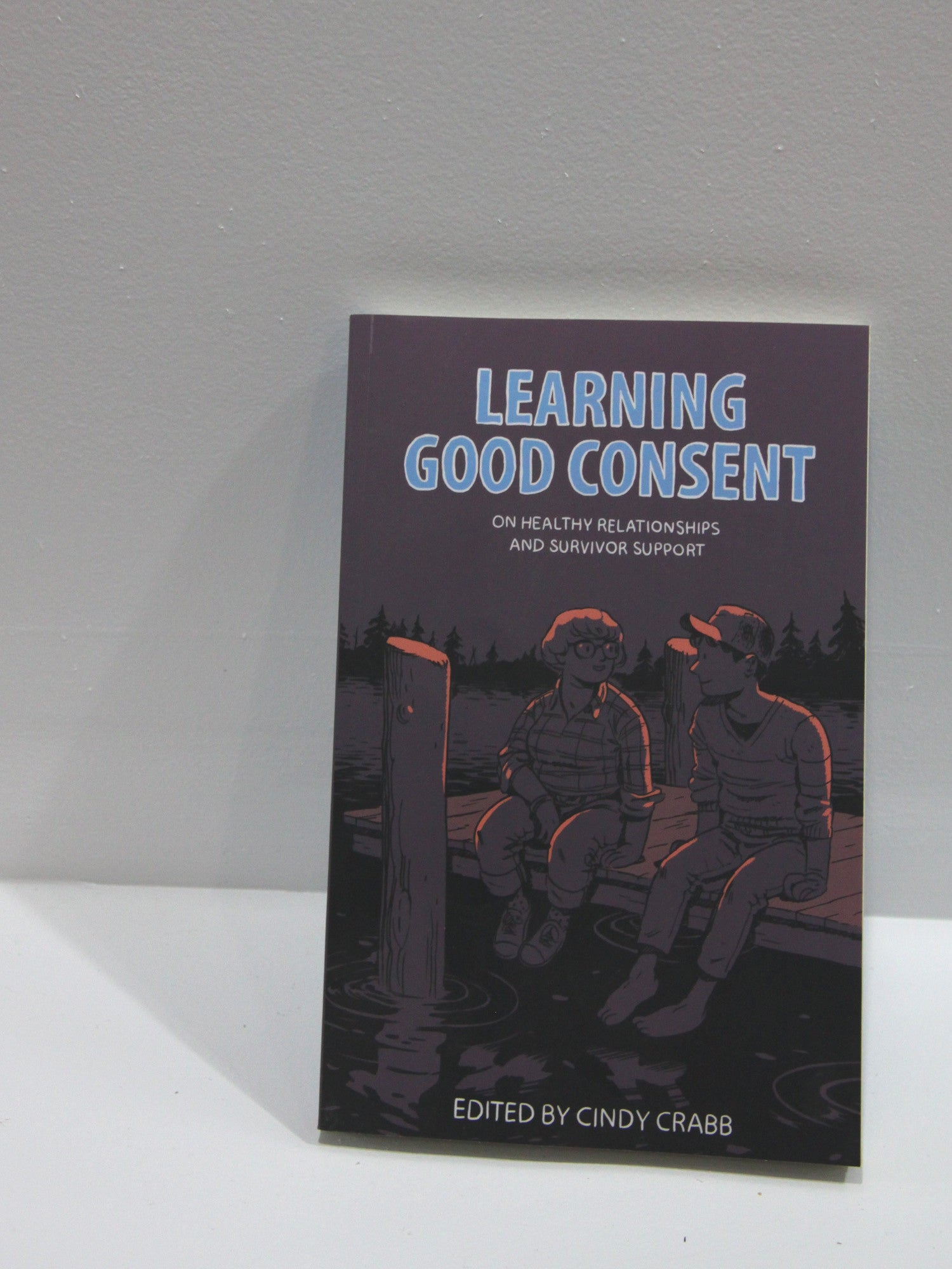 Learning Good Consent | Microcosm Publishing at Sustain - Gallery and Shop - Chicago, IL