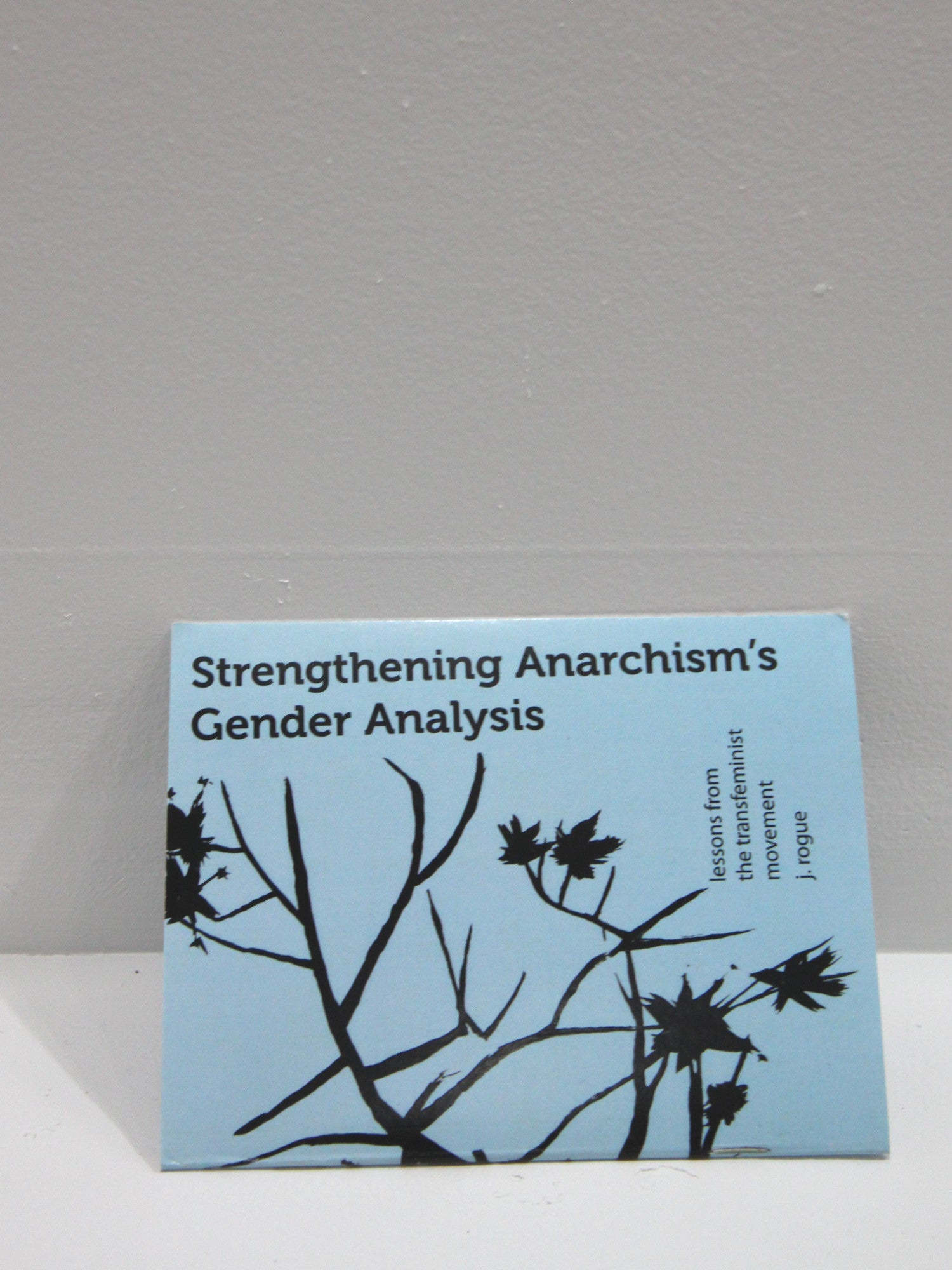 Strengthening Anarchism's Gender Analysis | Microcosm Publishing at Sustain - Gallery and Shop - Chicago, IL