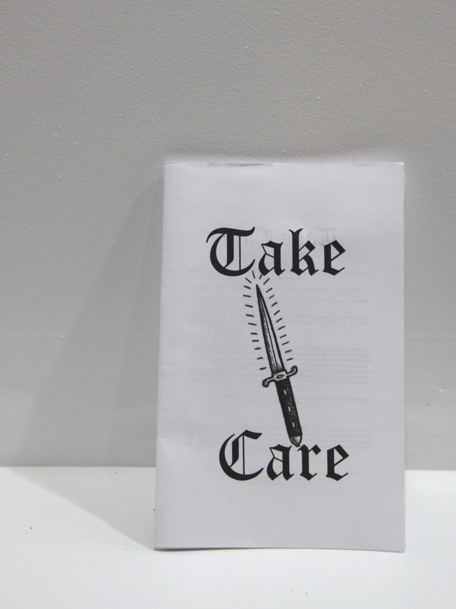 Take Care | Brown Recluse at Sustain - Gallery and Shop - Chicago, IL