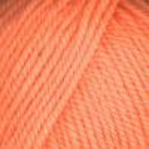 0472 Cantalope (Mellon) - Plymouth Encore Worsted Yarn