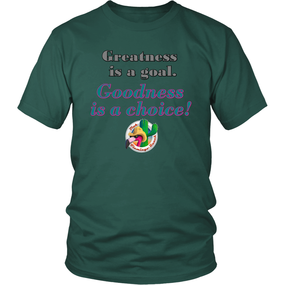 """Goodness"" District Unisex Shirt"