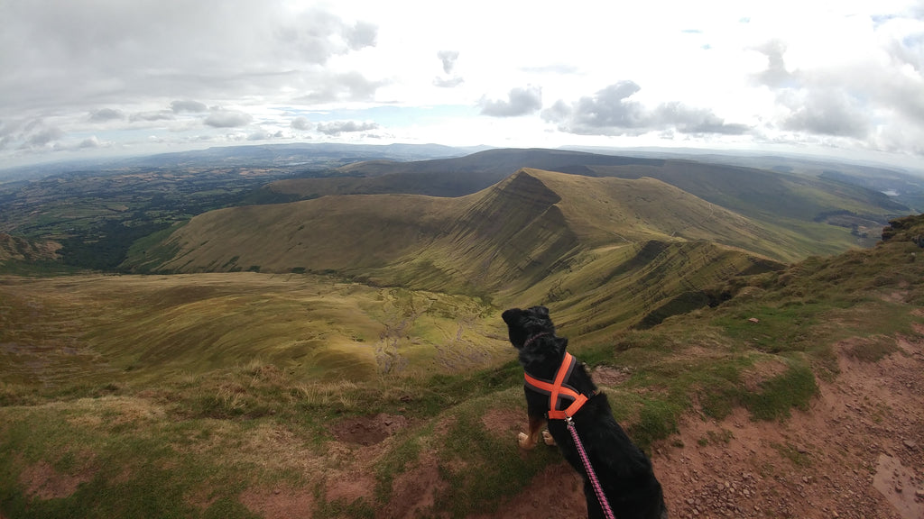 Girls' Road Trip to the Brecon Beacons