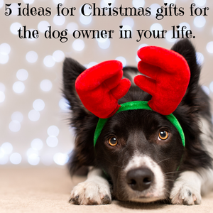 5 ideas for Christmas gifts for the dog owner in your life.