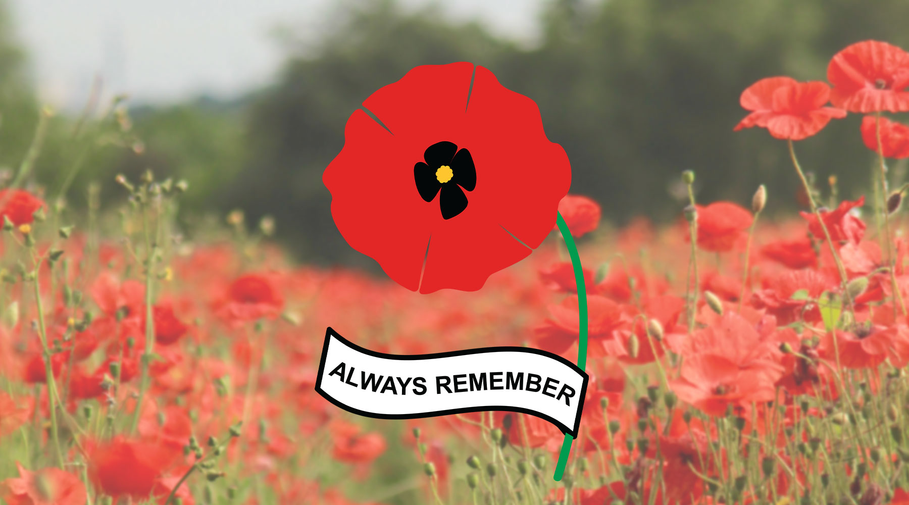 Veterans Day Remembrance Poppy | SVG DXF EPS PNG Cut Files | Free for Commercial Use