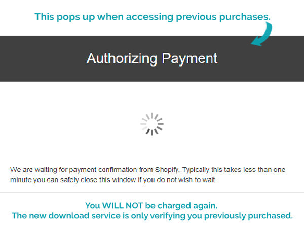 Authorizing Payment Popup
