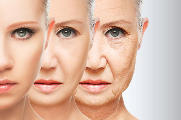 Oral supplements for ageing skin