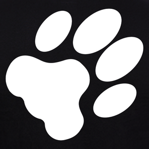Dog Paw Print dog t-shirts india online at gajari