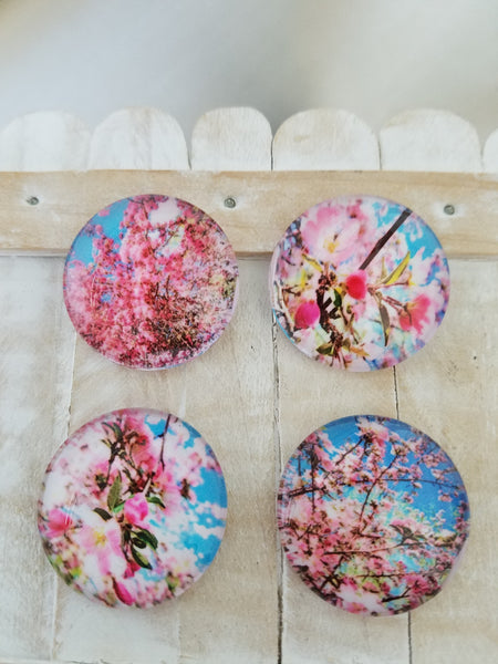 Pretty flower magnets, party favors, set of 4 memo holders - Sweet Meadow Designs