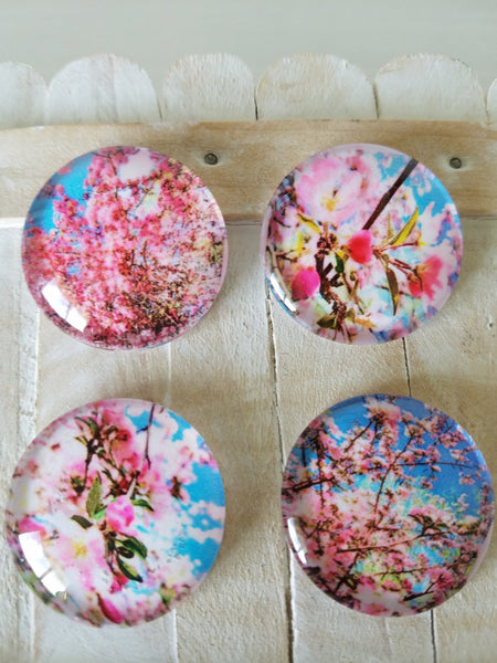 flower magnets coworker gifts