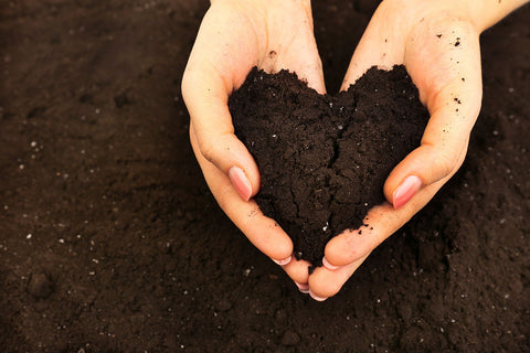 Hands in soil making heart shape.