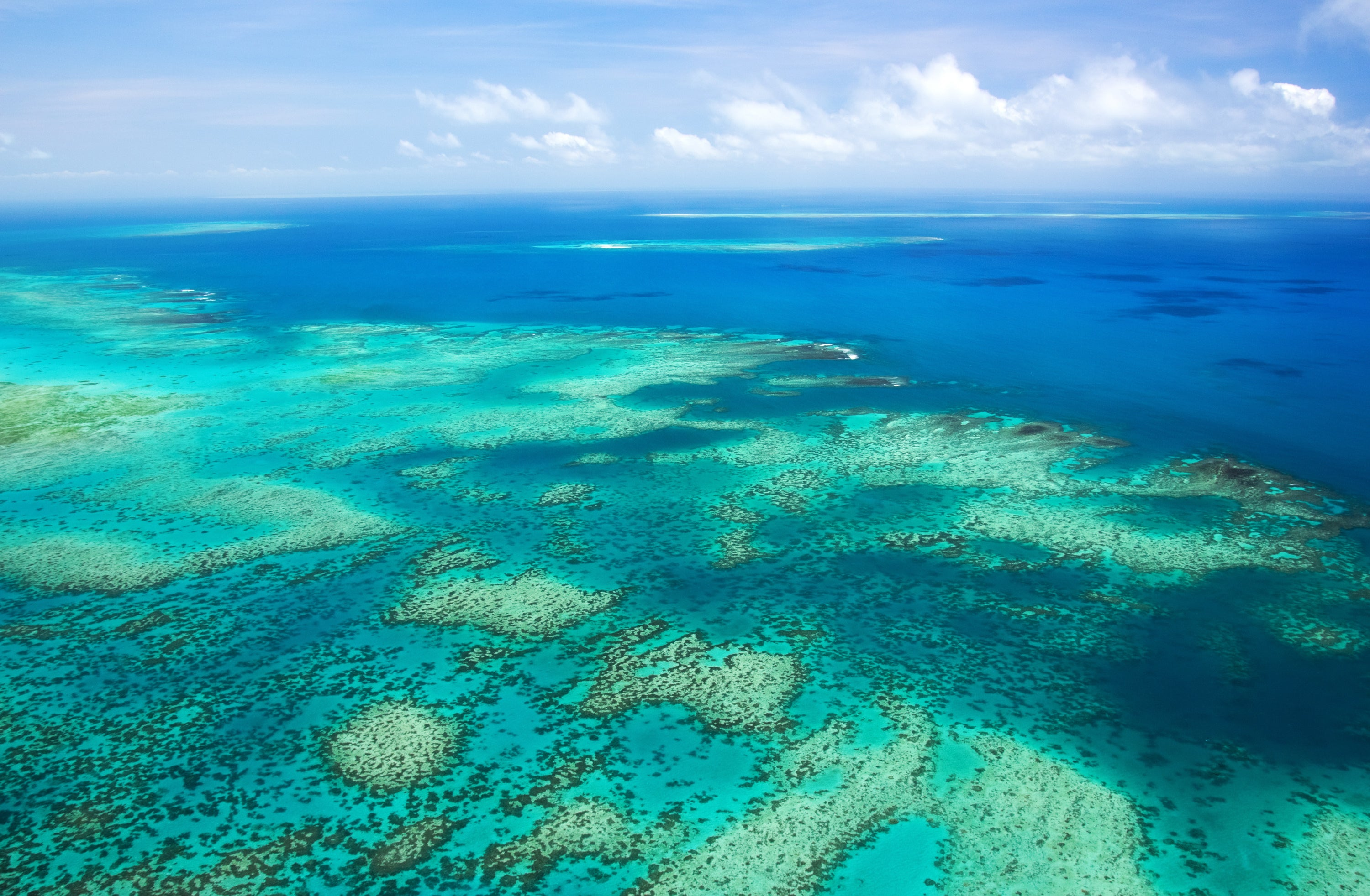 Ariel shot of coral reef in blue water.
