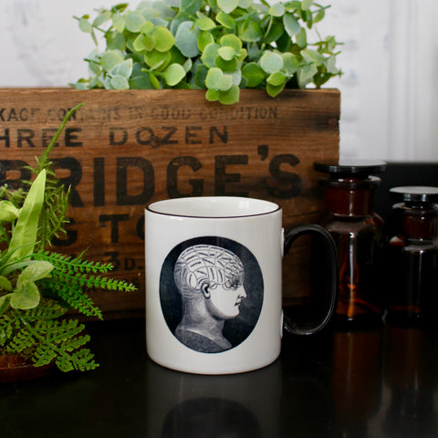 Curiosity Society Mug - Phrenology