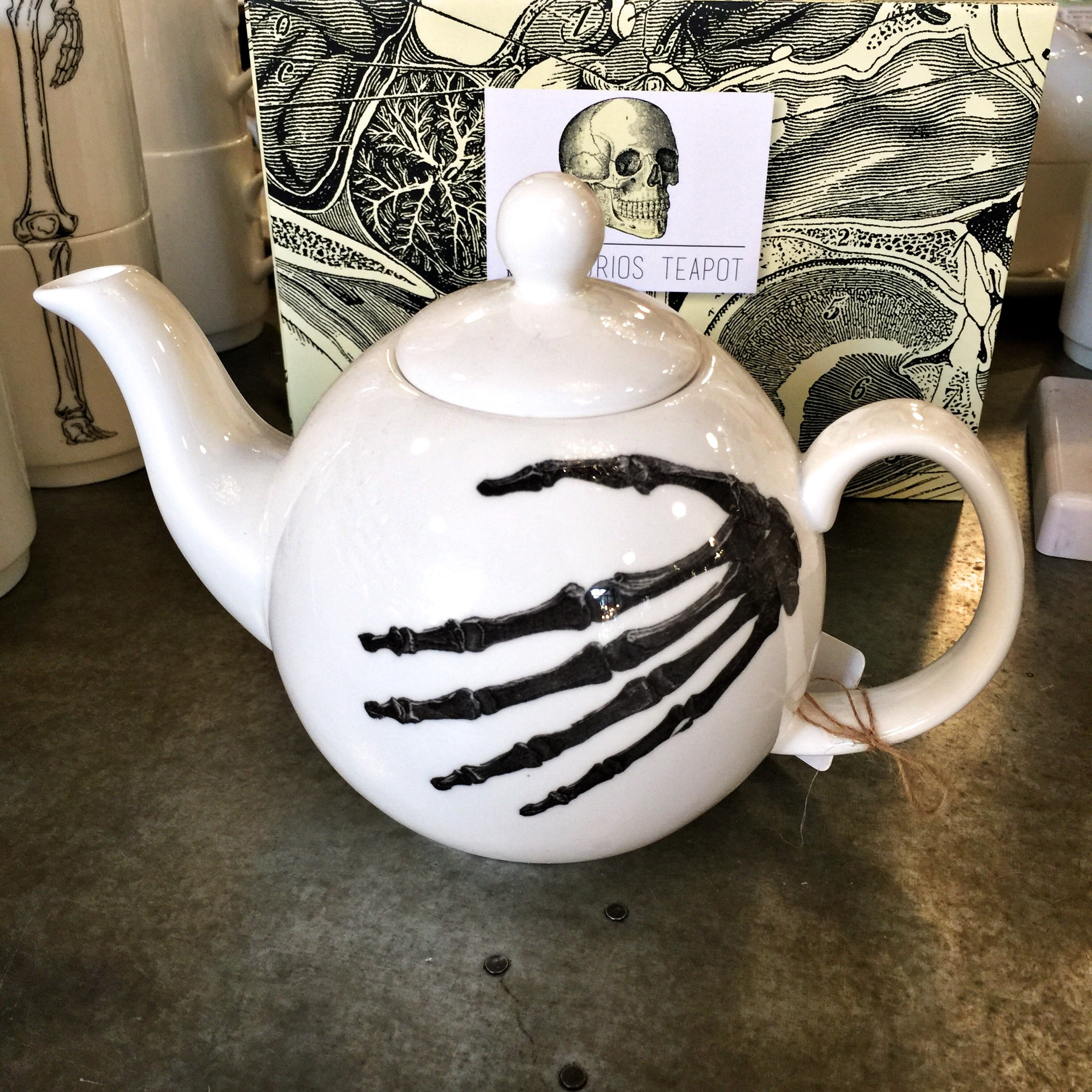 Small China Teapot - Skeleton Hand