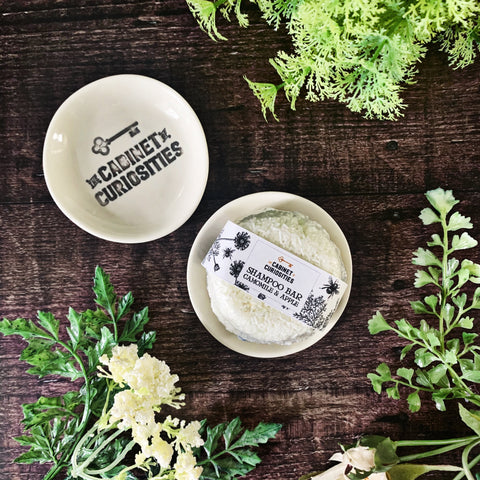 The Cabinet of Curiosities Shampoo Bar Dish