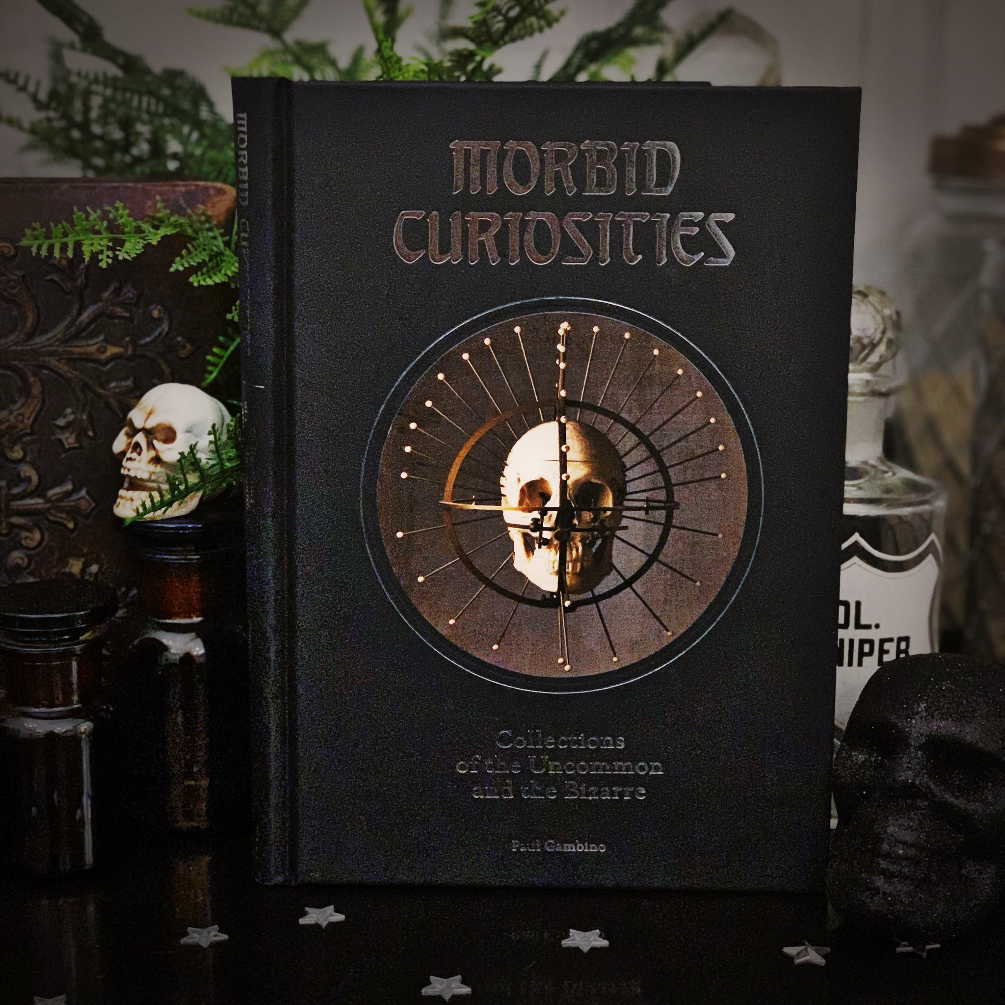 Morbid Curiosities - Collections of the Uncommon & Bizarre