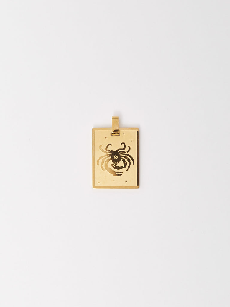 Full view flat lay of Cancer Charm charm Bagatiba