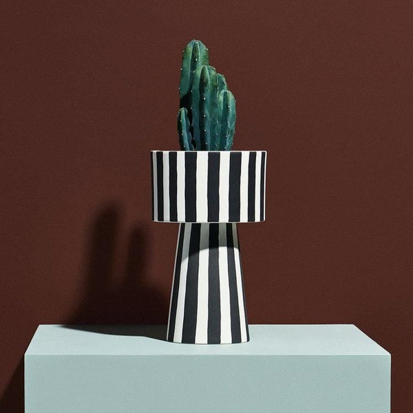 the toppu pot striped pictured with a cactus on a plinth with moody burgundy backdrop