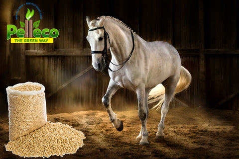 Pelleco's low-dust, low-moisture wood pellet bedding!