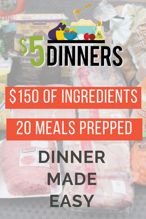 20 meals for $150 slow cooker freezer packs #1