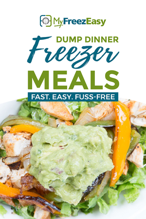 freezer friendly dump dinners cookbook
