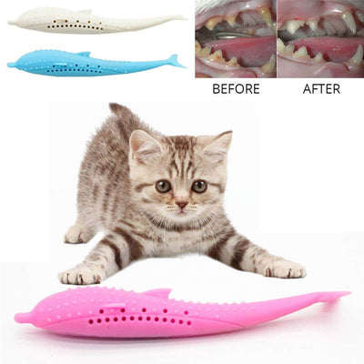 Cat Dental Catnip Chewing Toy