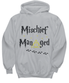 Mischief Managed – Harry Potter Inspired Hoodie (White)