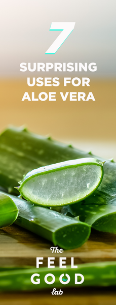 7 Amazing Benefits of Aloe Vera