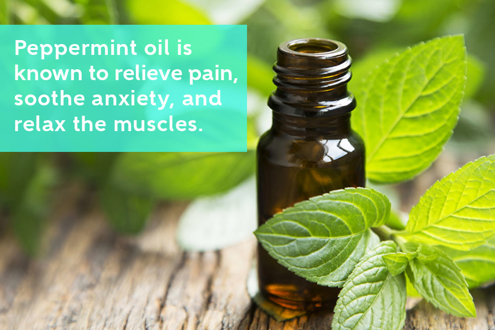Peppermint Oil can Relax the Muscles and Relieve Pain