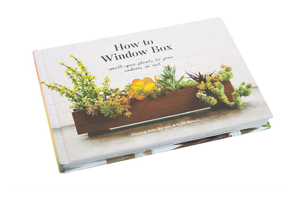 Complete How-to Guide For Creating Gorgeous Indoor Window Boxes