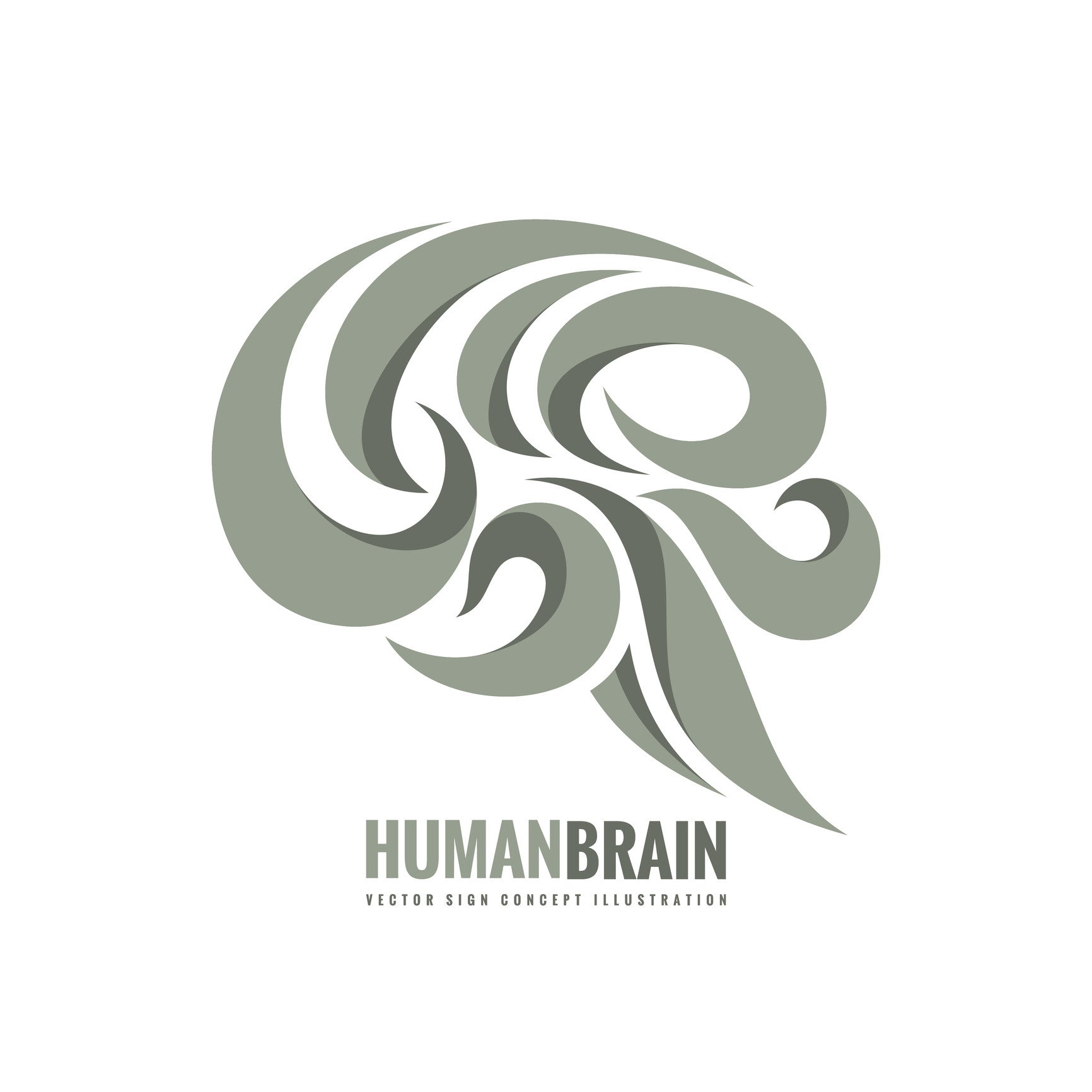 human brain in abstract