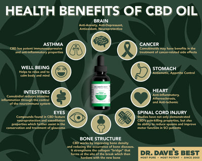 Dr. Dave's Best CBD Oil - Natural Flavor
