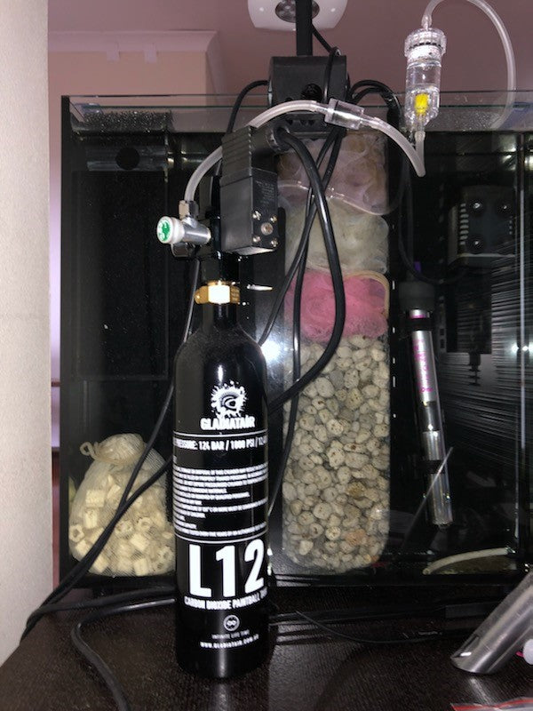 CO2 Cylinders for Aquariums
