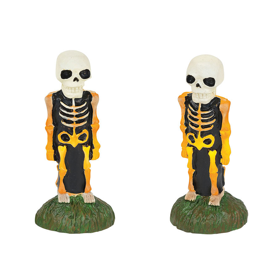 Lit Skeleton Yard Decor