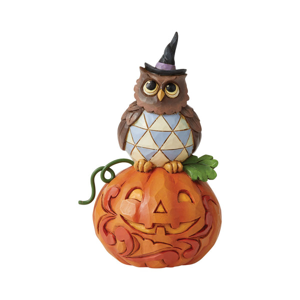 Mini Owl with Pumpkin