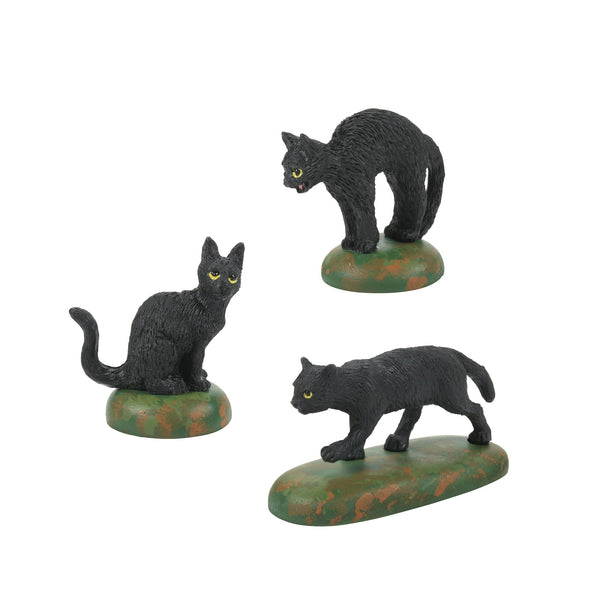 A Clowder Of Black Cats