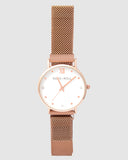 TWM002D (36mm Medium Size Face) Rose Gold