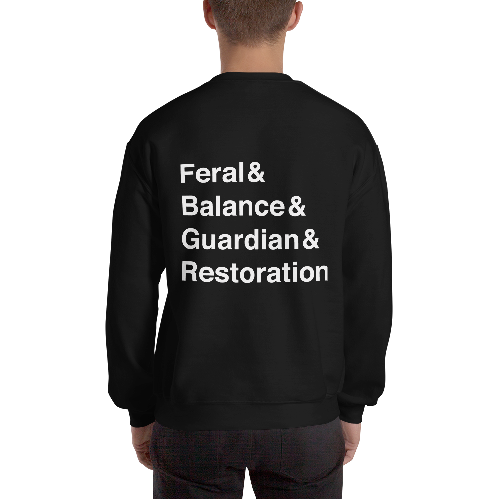 Team Druid Sweatshirt