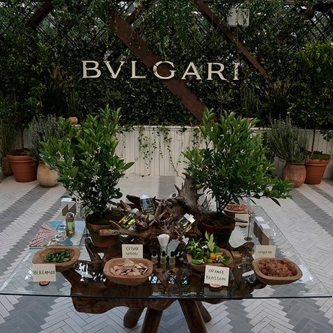 Bvlgari Man Wood Neroli X Gray Malin Launch