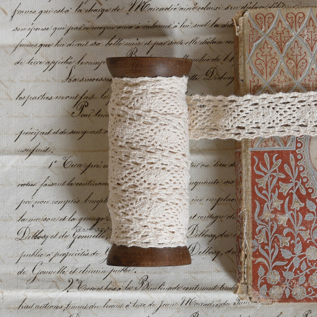 Spool of Lace Ribbon - Wide