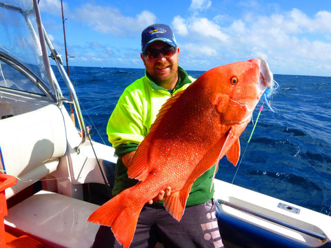 Red Emperor on PEtackle Reefmaster Hooks