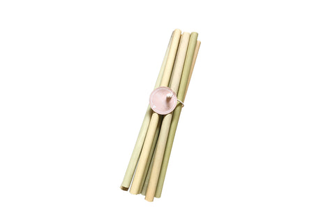 Set of 10 Bamboo Straw Set
