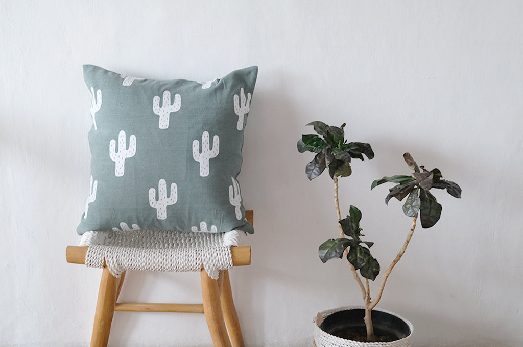 Cotton Cushion Cactus